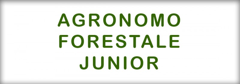 slide-agronomo-forestale-junior